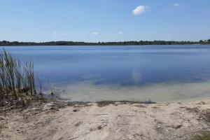 Hornet Lake in Canaveral Groves in Brevard County, FL (9 of 37)