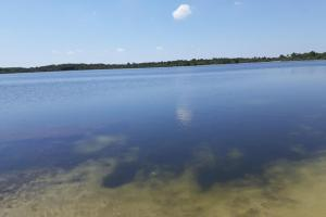 Hornet Lake in Canaveral Groves in Brevard County, FL (14 of 37)