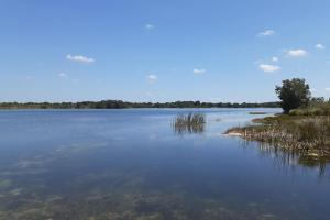 Hornet Lake in Canaveral Groves in Brevard County, FL (27 of 37)