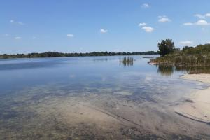 Hornet Lake in Canaveral Groves in Brevard County, FL (30 of 37)