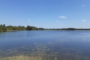 Hornet Lake in Canaveral Groves in Brevard County, FL (31 of 37)