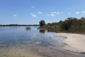 Hornet Lake in Canaveral Groves in Brevard County, FL (29 of 37)