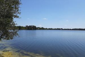 Hornet Lake in Canaveral Groves in Brevard County, FL (21 of 37)