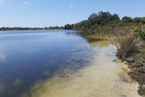 Hornet Lake in Canaveral Groves in Brevard County, FL (15 of 37)