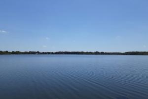 Hornet Lake in Canaveral Groves in Brevard County, FL (20 of 37)
