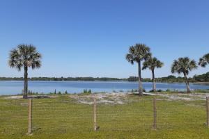 Hornet Lake in Canaveral Groves in Brevard County, FL (11 of 37)