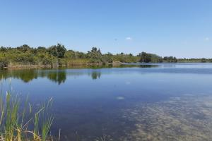 Hornet Lake in Canaveral Groves in Brevard County, FL (26 of 37)