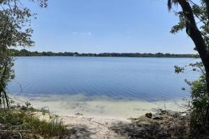 Hornet Lake in Canaveral Groves in Brevard County, FL (18 of 37)