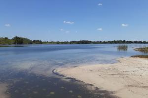 Hornet Lake in Canaveral Groves in Brevard County, FL (28 of 37)