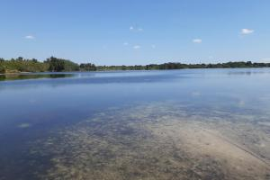Hornet Lake in Canaveral Groves in Brevard County, FL (25 of 37)
