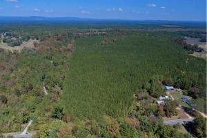 Wilsonville Timber and Recreational Land