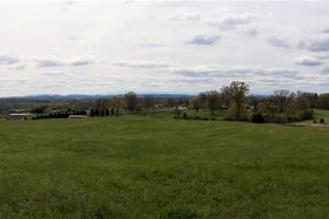Equestrian farm potential in subdivision near Holston River Tennessee - Grainger County, TN