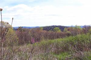 Mountain view acreage near Holston River - Grainger County, TN