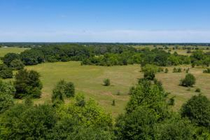 30 ac Timber Tract with Great Building Site in kaufman County