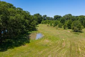 30 ac with Great Building Site and Scattered Timber near Cedar Creek Lake