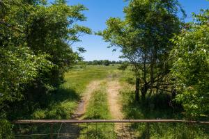 15 ac with Great Road Frontage, Building Site near Cedar Creek Lake