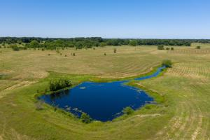 12 ac with Pond, Scattered Timber near Cedar Creek Lake