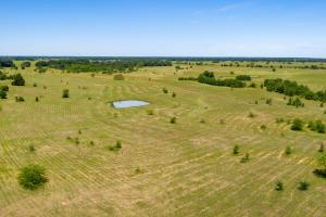 14 ac tract in Kaufman County, Pond, Shade Trees, Great Building Site near Cedar Creek Lake