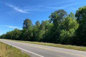 Autaugaville Hwy 14 Recreational Tract - Autauga County, AL