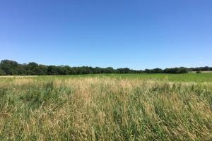 Rochester City Limits Acreage!  Build - Farm - Hold for Investment!