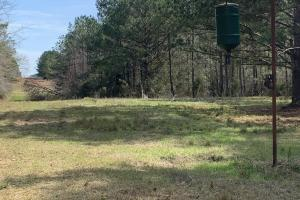 Florida Panhandle Hunting and Timber Retreat in Walton, FL (60 of 77)