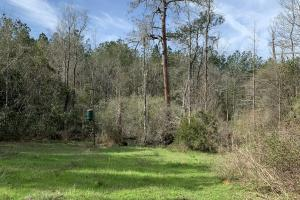 Florida Panhandle Hunting and Timber Retreat in Walton, FL (35 of 77)