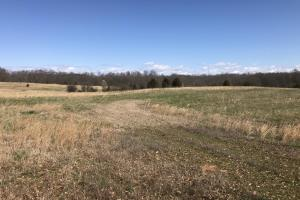 Pasture Land or Development Opportunity - Anderson County, SC