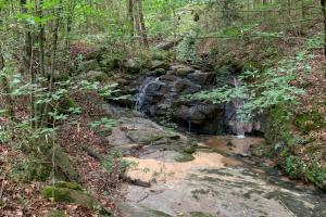 Macon Subdivision Lot with Waterfall and Old Dam - Jones County, GA