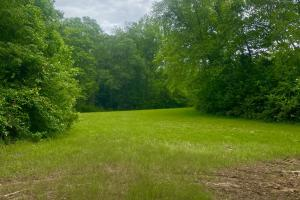 Little Oakmulgee Creek Hunting Tract  - Chilton County, AL