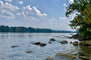 Tennessee River and Timber Investment - Marshall County, AL