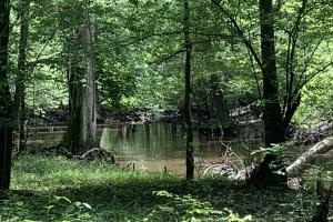 Great Hunting and Fishing on de Loutre Creek - Union Parish, LA