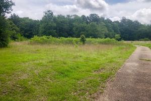 Cypress Pond Branch Homesite or Development Tract - Mobile County, AL