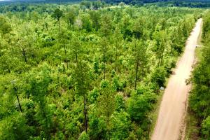 Laton Hill Escatawpa River Tract - Washington County, AL