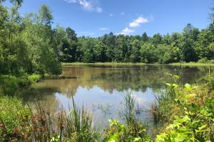 Miller Creek Development or Recreational Property - Pontotoc County, MS