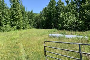 122 Acre Riverside Hunting Tract