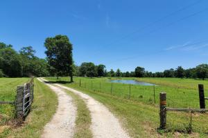 20 Acre Homesite/Recreational Property