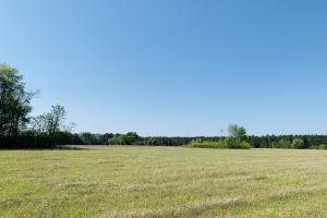 Blenheim Farming, Hunting and Recreational Tract - Marlboro County, SC