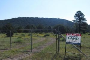 Unit 15 40 acre inholding in National Forest - Catron County, NM