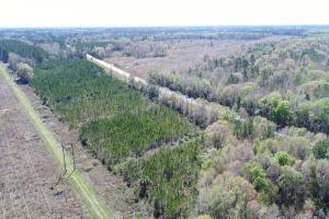 Highway 32 Hunting & Timber Investment - Glynn County GA
