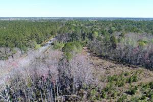 Green Swamp Road Tract in Glynn, GA (23 of 31)