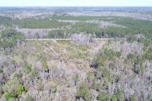 Green Swamp Road Tract in Glynn, GA (21 of 31)