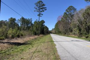 Green Swamp Road Tract in Glynn, GA (8 of 31)
