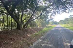 Beaufort County Residential Acreage