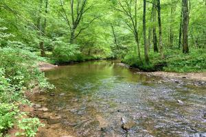 Little Cahaba River Tract in Trussville, AL - Jefferson County, AL