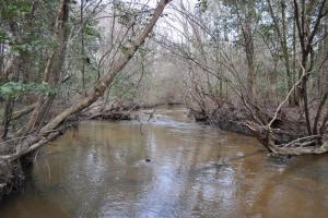 Little Mulberry Creek - Autauga County, AL