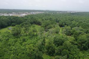 Little River Road Recreation and Homesite Tract  - Mobile County, AL