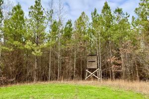 School House Trophy Hunting and Timber Investment - Marengo County, AL