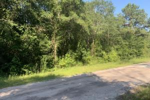 Fifth St Lot - Sampson County, NC