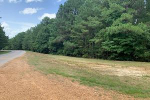 Social Distance on This Wooded Cabin or Homesite North of Kosciusko - Attala County, MS