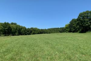 Elkton Homesite & Hunting Tract - Giles County, TN